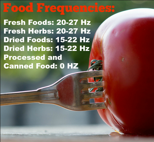 food frequency